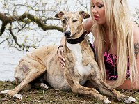 Sarah with brindle greyhound