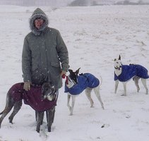 Todd, Kanga and Joe in the snow